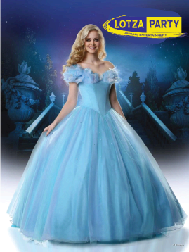 Cinderella meet and greet party