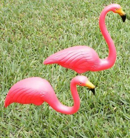 Flamingo Yard Signs