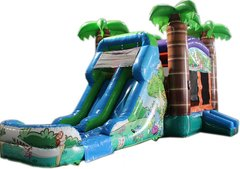 Tropical combo with double lane water slide.