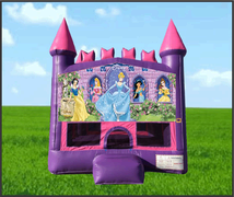 Pink Castle Disney Princess 13x13