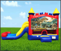 Dinosaurs 4 in 1 Combo Waterslide
