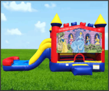 Disney Princess 4 in 1 Combo Dry Slide