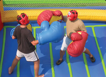 Boxing Gloves (set of 4)