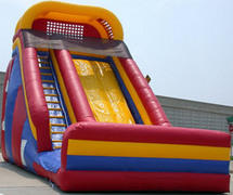 25ft Giant Slide