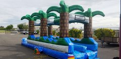 BF - 40 Ft Double Lane Slip N Slide Palm Tree