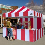 Carnival 10X10 Canopy
