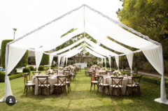 Draped Canopies