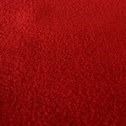 Red Carpet 4FT X 10FT Runner