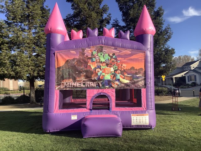 Minecraft Bounce House (Pink Module)