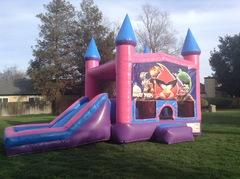 Angry Birds Castle Combo Pink with Slide Wet