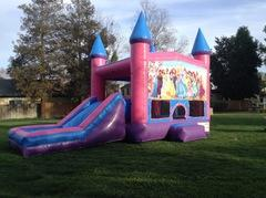 Princess Castle Combo Pink with Slide Wet