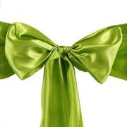 Willow Green Sash