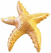 Inflatable Starfish 20