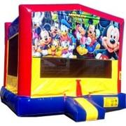 Mickey And Friends Bounce