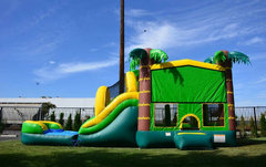 Jungle bounce house, slide, pool, hoop combo. Wet or dry.