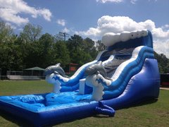 20ft. Dolphin Slide