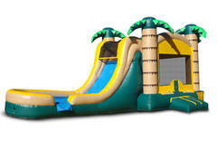 Tropical Slide 4-1 Combo-Dry