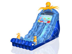 18' Octopus Waterslide with Pool