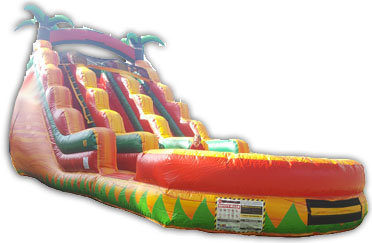Dual Lane Tropical Fiesta Dry Slide