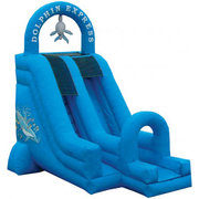 Dolphin Express Dry Slide