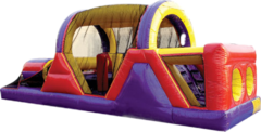 Giant Slides and Obstacle Course
