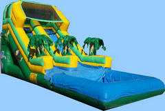 tropical slide with pool