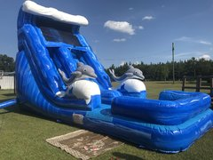 18 FT DOLPHIN SLIDE
