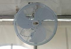 TENT FAN 20 INCH CLIP ON