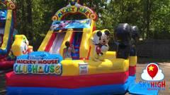 14ft Mickey Slide