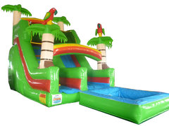 18ft Amazon Slide w/ Pool