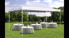 ASJ-10' x 20' Outdoor Canopy with walls
