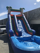 ASJ- 18 ft Palm Tree Slide WET