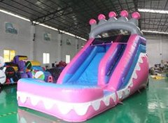 14' Princess Wet Slide