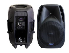 Pro Audio Floor Speaker