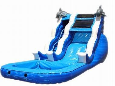 Dolphin Dip Single Lane Water Slide
