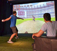Cricket Simulators