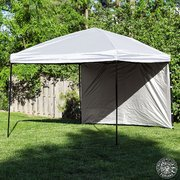 10 x 10 Pop Up Canopy Tent