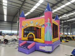 USED Pink Castle