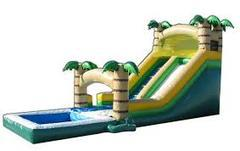 Safari Wet Slide with Pool