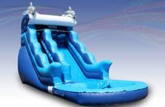 16' Dolphin Water Slide with Pool