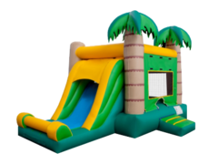 Tropical Castle Combo with slide