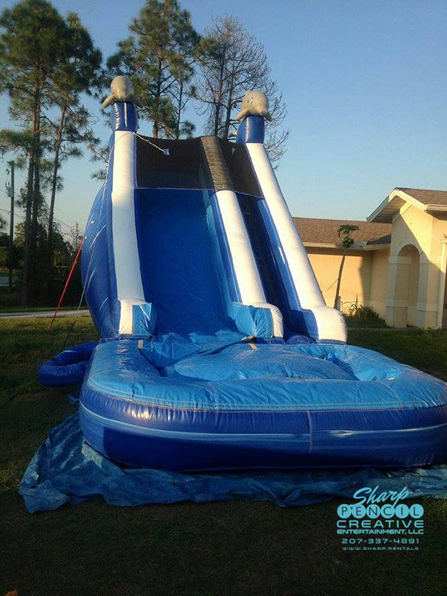 Blue Dive Dolphin Water Slide | Sharper Events & Party Rentals