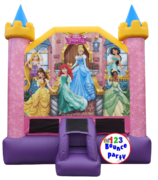 DISNEY PRINCESS'S Castle