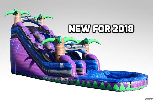 18 Ft. Purple crush water slide