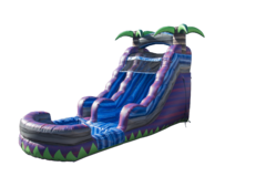 16 Ft. Purple crush Water Slide