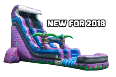 22 Ft. Purple tsunami Water Slide with Pool 2 Day rental