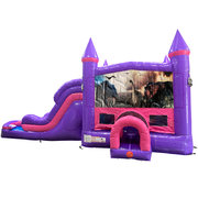 Dinosaurs 2 Dream Double Lane Wet/Dry Slide with Bounce House