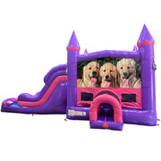 Dogs Dream Double Lane Wet/Dry Slide with Bounce House