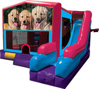 Dogs Inflatable Pink Combo 7in1
