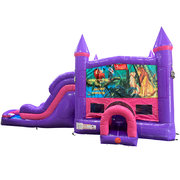 Lion King Dream Double Lane Wet/Dry Slide with Bounce House